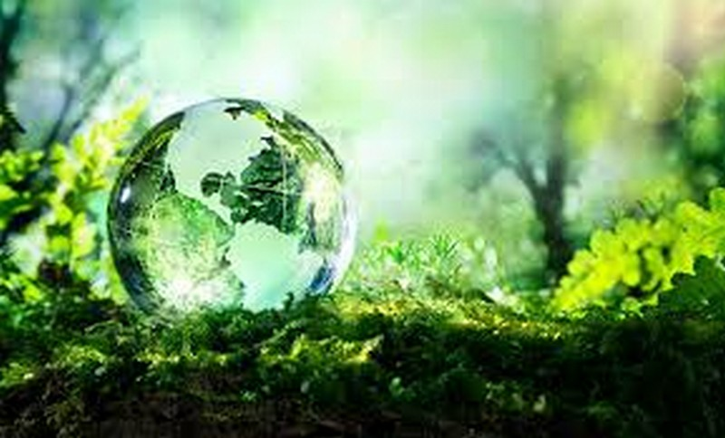 Assessoria de meio ambiente